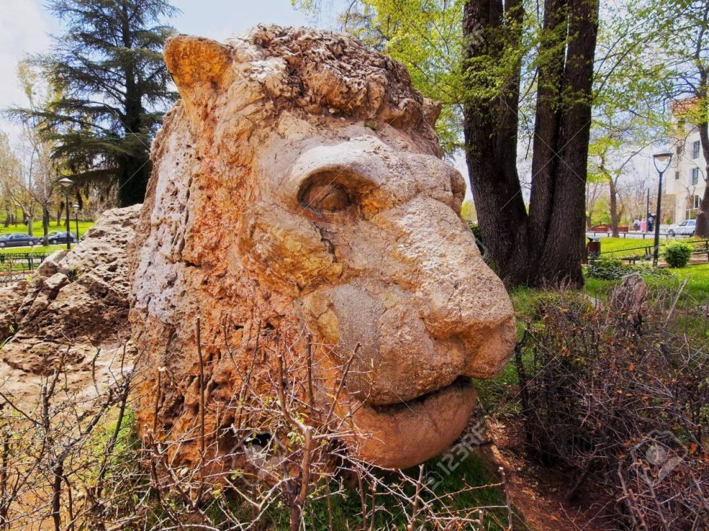 Atlas Lion, Ifrane
